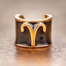 Charms στηθοσκοπίων με τα σύμβολα των ζωδίων  Aries - Κριός